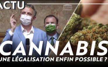 Cannabis : une légalisation enfin possible ?